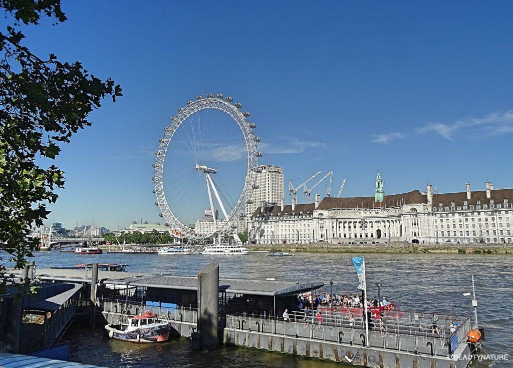 London London Eye-min