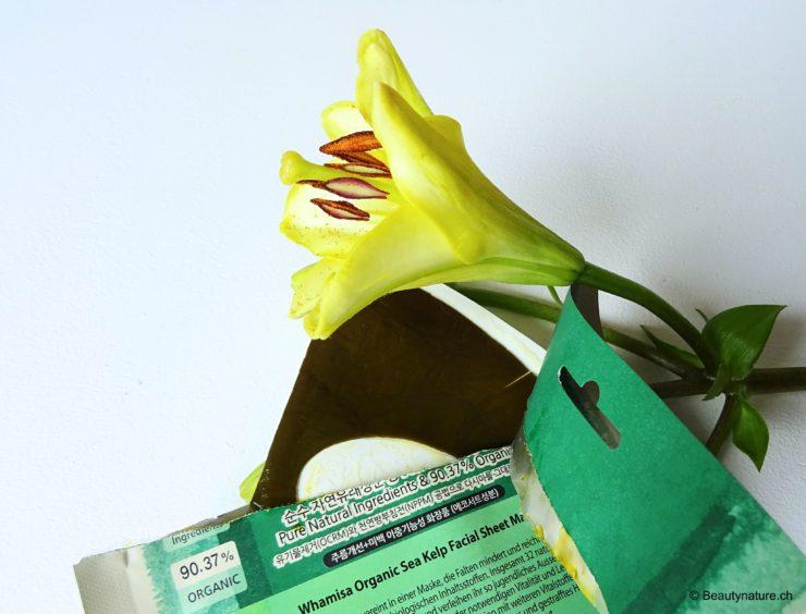 Organic Sea Kelp Facial Sheet Mask