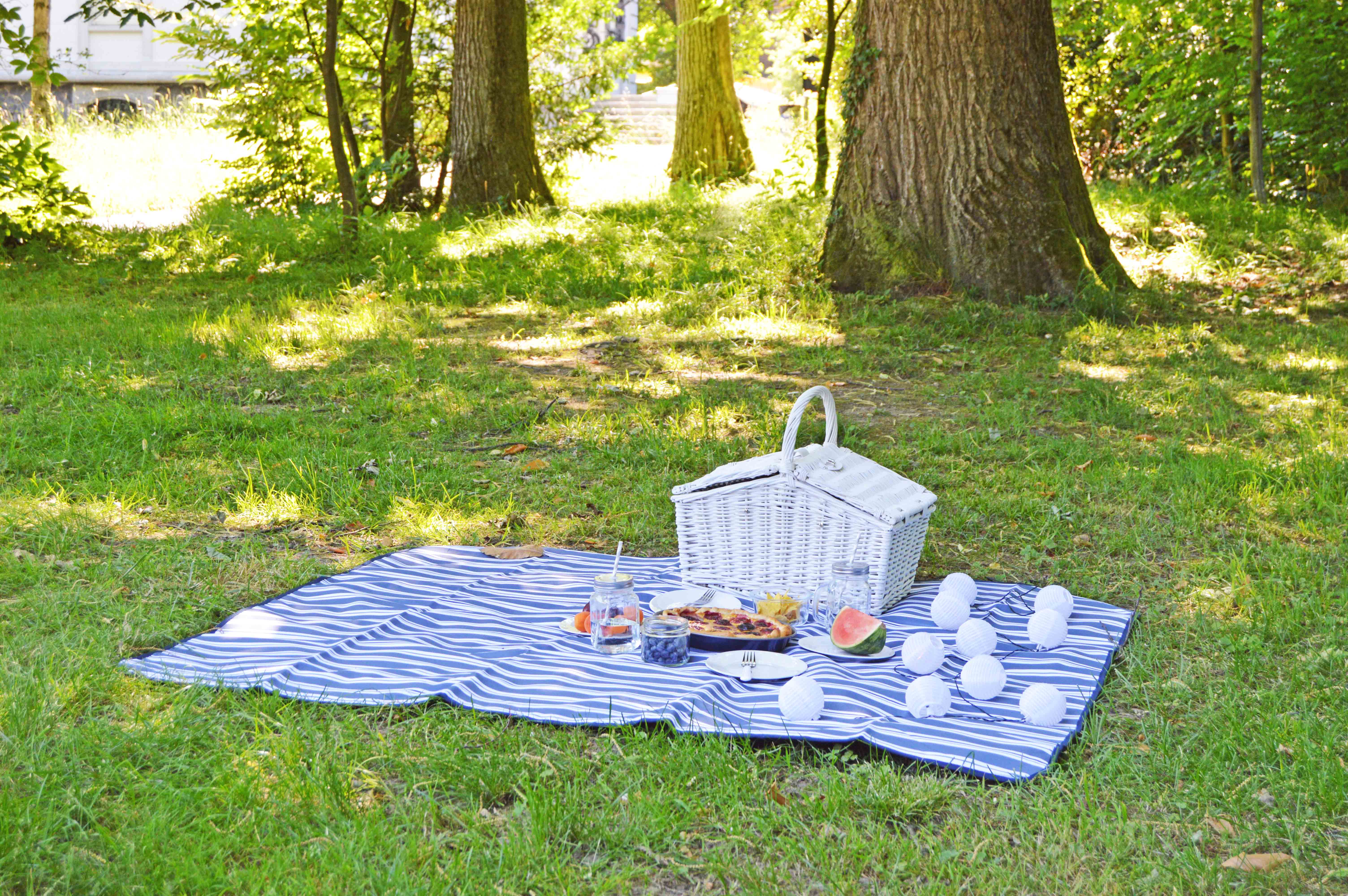 tipps f r das perfekte sommer picknick the chic advocate. Black Bedroom Furniture Sets. Home Design Ideas